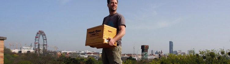 Mit kooperativer Landwirtschaft zum eigenen Bienenstock