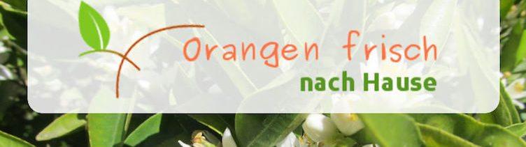 Informationen von Ruth Palomero's Obstplantage nahe Valencia