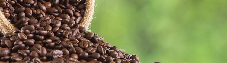 13 wenig bekannte Fakten über Kaffee