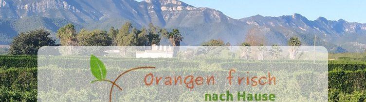 Informationen von Ruth's BIO-Obstplantage mit Direktversand bei Valencia/SPA