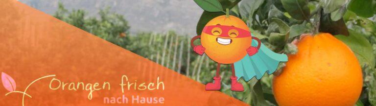 Orangenfrischnachhause