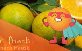 orangenfrischnachhause Titelbild
